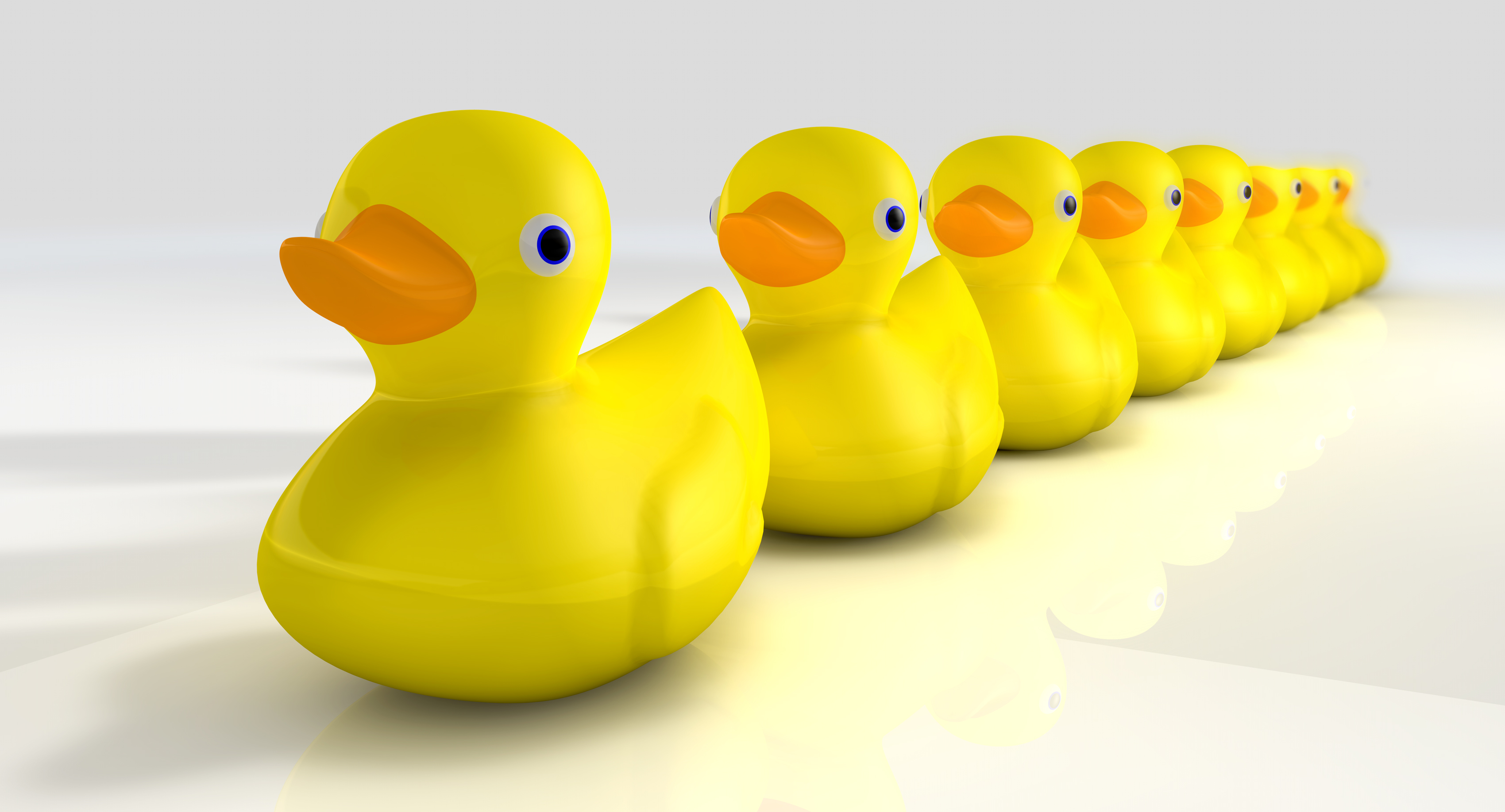 Get your tax planning ducks in a row